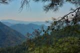 Troodos mountains 9573.JPG