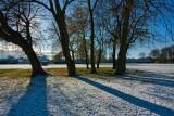 Cottingham park IMG_4253-1.jpg