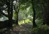 Stock Ghyll walk 4