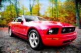 WWW.CLUBMUSTANGRIVENORD.COM