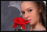 LAURA again    /    AU NOM DE LA ROSE