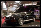 PIONEER-002.jpg