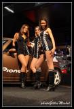 PIONEER-021.jpg