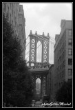 NYC0624.jpg