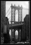 NYC0625.jpg