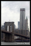 NYC0655.jpg