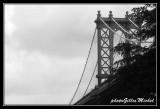NYC0658.jpg