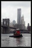 NYC0662.jpg