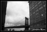 NYC0683.jpg