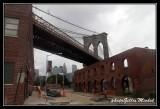 NYC0686.jpg