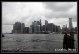 NYC0691.jpg