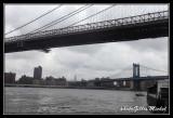 NYC0693.jpg