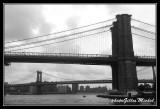NYC0696.jpg
