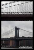 NYC0699.jpg