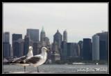 NYC0517.jpg