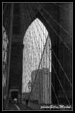 NYC0728.jpg