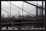 NYC0729.jpg