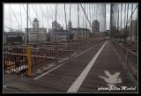 NYC0731.jpg
