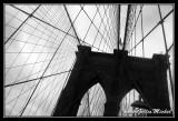 NYC0734.jpg