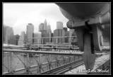 NYC0737.jpg