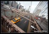 NYC0758.jpg