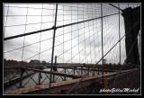 NYC0766.jpg