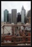 NYC0773.jpg