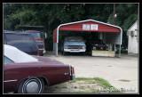 Dodge198.jpg