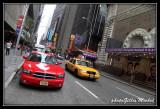 NYC1013.jpg