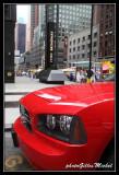 NYC1022.jpg