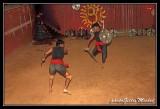Martial art show