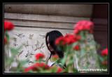 ALEXANDRA516.jpg
