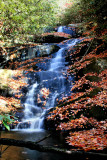 Falls> No. 4   30 to 40 Ft. Autumn Colors Pictures Made 11/08/08