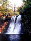 Silver Run Falls About 40 Ft. NC.
