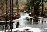 Beavers Pond 1/2/09