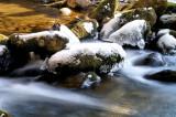 Twin Creek TN.
