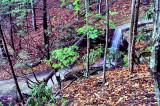 In Stone Mountain Park