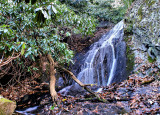 A Littler Waterfalls I Found in Doughton Pack Just off the RD. (100 Yds)