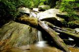 Gauley Creek
