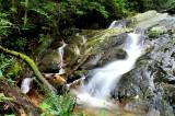 Gauley Creek  Falls