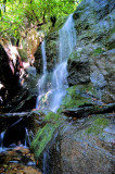 The 3Th Waterfalls found on Ellis Creek About 10 Ft.