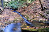 Stone Mountain Creek Fall Pictures Made Saturday 10/30/10