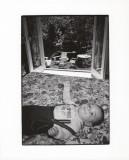 baby robin.jpg