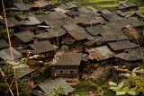 Roofs of Dong village