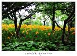 EXPO Garden