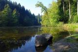 Waldweiher (83913)