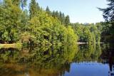 Waldweiher (84039)