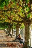 Herbst (84513)