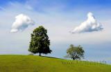 Wolken (96067)