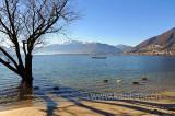 Lago Maggiore (108765)